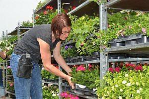 Blumenmarkt von Blumenzeiten, 27.04.2013